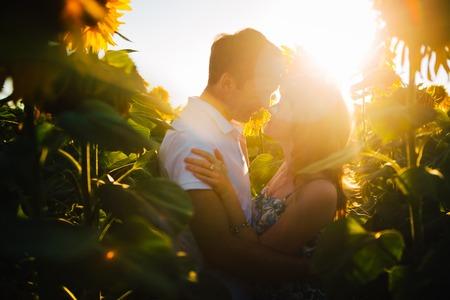 pareja abrazada: Pareja romántica de pie y besándose en el fondo de verano prado de girasol atardecer Foto de archivo