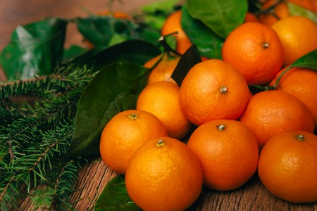 many branches: many fresh mandarins and branches  of a Christmas tree on a wooden background