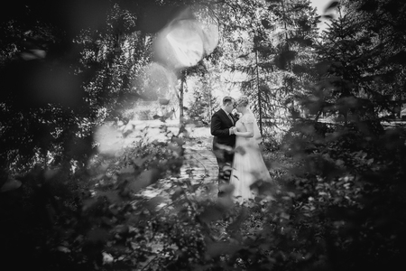 black and white photography: Black white  photography beautiful young couple stand on  background forest Stock Photo