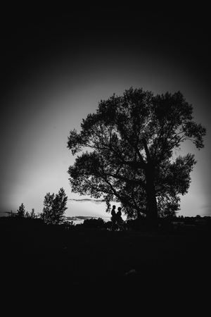 black and white photography: Black white photography romantic couple standing  and kissing on background summer meadow sunset Stock Photo