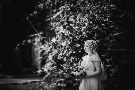 black and white photography: Black white  photography beautiful young bride stand on  background forest