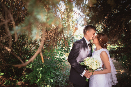 Portrait of a couple bride and groom on a park. Stock Photo
