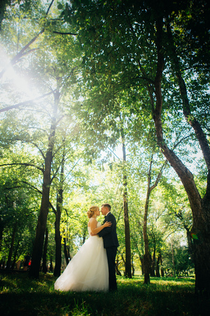 couple bride and groom on the background of the parks trees.