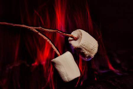 outdoor fireplace: marshmallows over a campfire close up