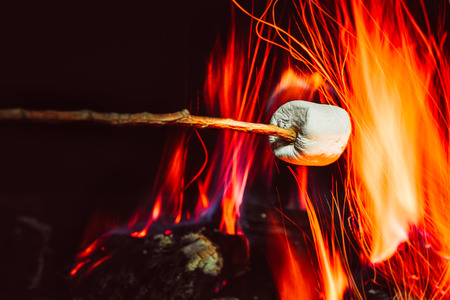 gather: marshmallows over a campfire close up