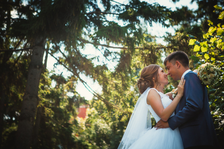 couple groom and bride hugging and kissing on nature park background