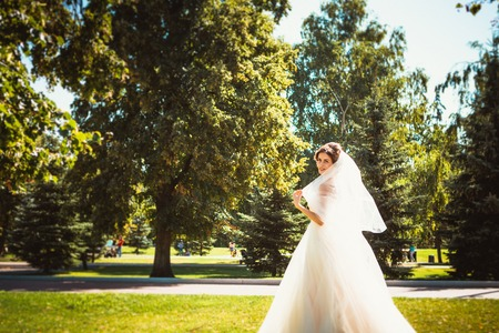 The beautiful brunette bride on a walk in park Stock Photo