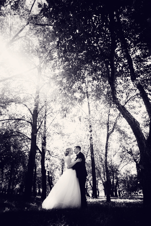 couple bride and groom on the background of the park's trees.