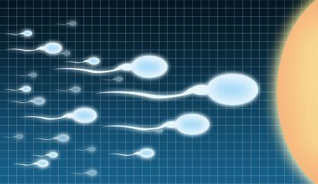 spermatozoa: Illustration of impregnation on an abstract background