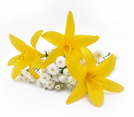 Picture of bouquet from yellow and white flowers on a white background photo