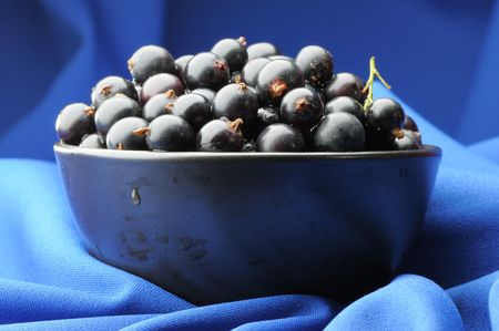 black currants: Black currants in the black bowl on the blue background. Narrow depth of field.