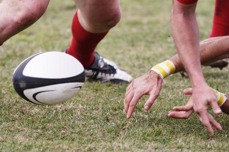 and rugby ball: Pelota de rugby en el campo de juego.