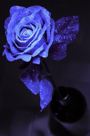 紙と、暗い背景にプラスチックから作られた人工のバラ。 写真素材