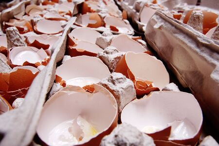 Used and empty egg-shells in the carton packing. photo