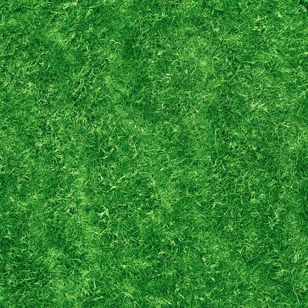 top veiw: Green grass texture. Veiw from top. Stock Photo