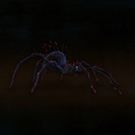 venomous: Dangerous and poisonous spider. Illustration.