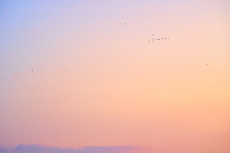 Beautiful sunset sky. Nature background. Light peach and light purple colors. 版權商用圖片