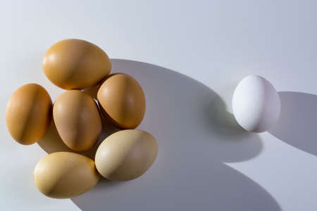 Raw organic rustic brown and white eggs over white background. Alone among strangers, the concept of inequality and racism