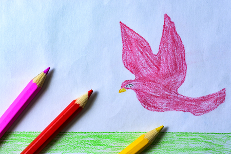 A childs drawing of a pink dove, grass and sky with colored pencils.