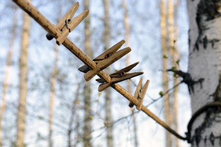 Rustic Old wooden clothespins on rope on tree background . Selective focus.