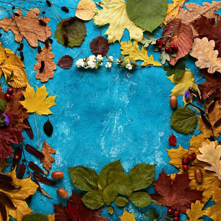 Autumn composition. Frame of fallen green, yellow, orange and red leaves on turquoise background. Autumn, leaf fall. Flat position, top view, copy space, square