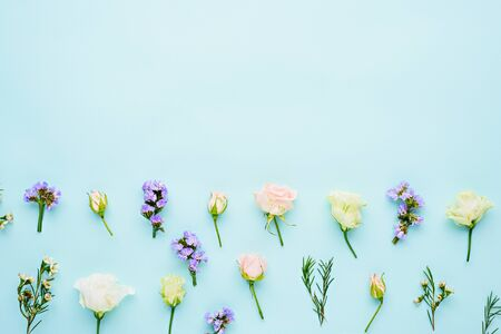 flower composition on blue background with space for text, copy space