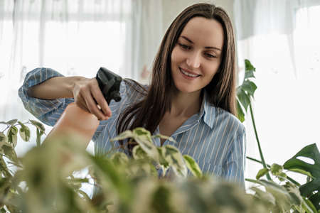 closeup woman in blue shirt sprays plants, plant care concept