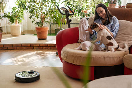 woman in blue shirt plays with dog, Jack Russell Terrier breed at home on couch, Robotic vacuum cleaner on carpet, enjoying life concept, cozy and comfortable house