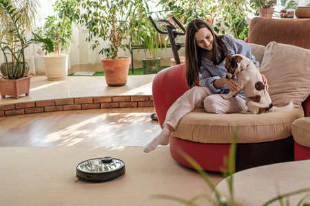 Robotic vacuum cleaner on carpet, woman in blue shirt plays with dog, Jack Russell Terrier breed at home on couch, enjoying life concept, cozy and comfortable house, smart device
