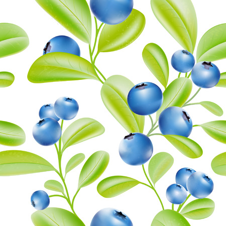 blue berry: Blueberries. Blue berries pattern. Big crop. Garden plants. Leaves on the branch. Sweet berry. Vector plant. Botany. Bunch of berries.