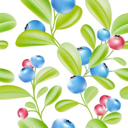 blue berry: Blueberries. Blue berries. Big crop. Garden plants pattern. Leaves on the branch. Sweet berry. Vector plant. Botany. Bunch of berries. Illustration