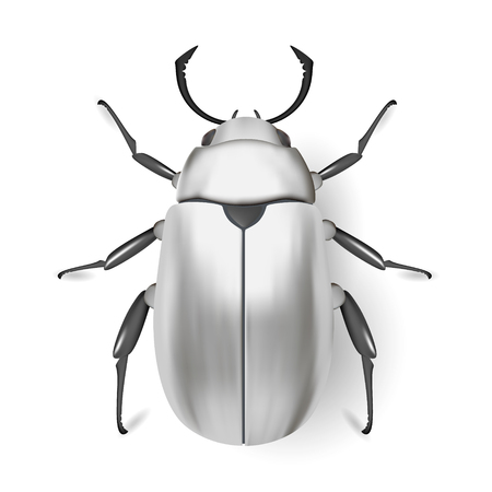 arthropod: Silver bug. Insect icon. Pads. Vector. Arthropod