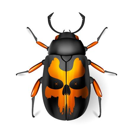 arthropod: Beetle skull. Insect icon. Pads. Vector. Arthropod Illustration