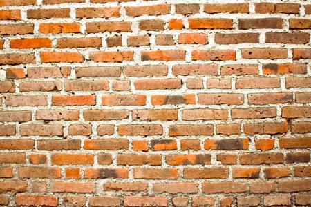 Brick Wall 스톡 콘텐츠