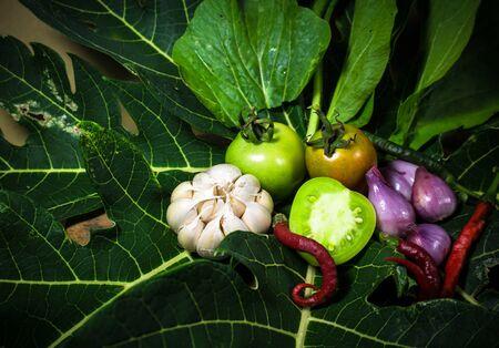 Various vegetables on papaya background Imagens