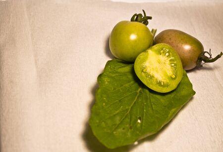 Fresh Tomato 写真素材