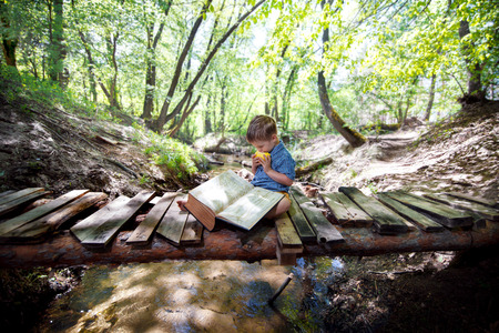 bridge in the forest: Boy reading a book