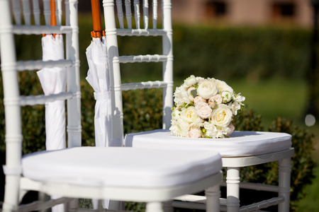 umbrella: Row of wedding chairs