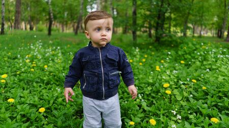 adorable child: Adorable child among the flowers in the spring forest