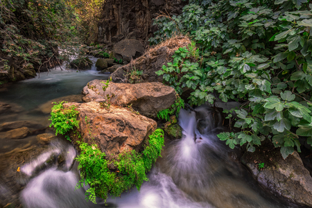 Banias river at north of Israel, flowing over rocks, shot with long exposure technique. Banque d'images