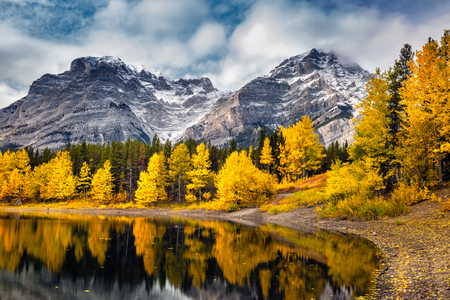 Lake with reflection of mountains and yellow trees at Kananaskis National Park, Canada. Фото со стока