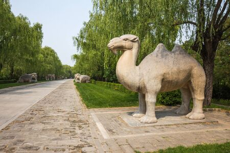Statue of a camel in the park on a background of trees.