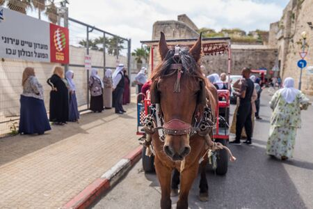 Acre, Israel - April 15 2018: Elderly Muslim women climb into the wagon drawn by a horse.