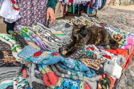 Cat on handmade socks at souvenir shop on Andriyivskyy Descent and view of St Andrews Church in Kiev city. Stock Photo