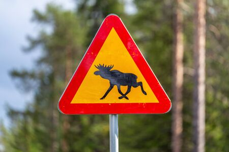 Road sign, warning of moose crossing in the area at Kiruna, Sweden.