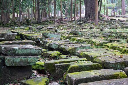 Old moss stones at Angkor Wat, Siem Reap, Cambodia.