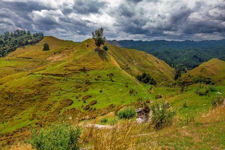 Green hills near Tongariro Alpine Crossing, New Zealand.