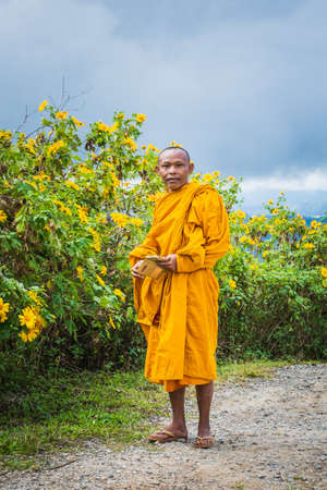 Monks come to see sunflowers bloom at Doi Inthanon park. Chiang Mai, Thailand - November 11 2017. 免版税图像 - 150996630