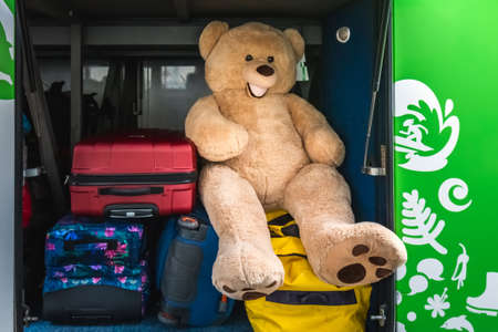Large bear and suitcases stacked in the luggage compartment of a bus. Oamaru, New Zealand - January 05 2018.