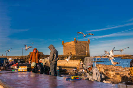 Seagulls waiting near fisherman for freshly catched fish for sale at the harbor in Essaouira, Morocco. Essaouira, Morocco - April 14 2016. Foto de archivo - 156207675